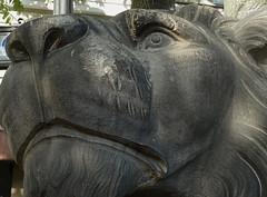Heimweh (niedersachsenfoto) Tags: löwe skulptur sandsteinskulptur spreeufer berlin niedersachsenfoto explore