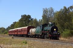 Grantham (Mittens_97) Tags: qr queensland queenslandrail queenslandtrains arhsqld bush green steam steamlocomotive steamtrain bb18¼1079 bb1814 bety