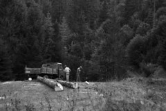 Deforestation of the Carparhian Mountains (TryVision) Tags: deforestation forest tree woods people mountains carpathians ukraine nikon nikond5300 ecology car track monochrome documentary foresty industry industrial deadtree blackandwhite bw