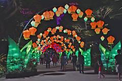 Jade Rabbits and The Moon (chooyutshing) Tags: jaderabbitsandthemoon themedlanternsset lightedup display midautumnfestival2018 attractions goldengarden gardensbythebay baysouth marinabay singapore