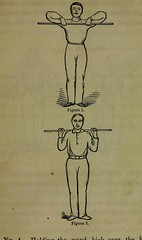 This image is taken from Page 283 of Weak lungs, and how to make them strong, or Diseases of the organs of the chest : with their home treatment by the movement cure (Medical Heritage Library, Inc.) Tags: tuberculosis calisthenics lung diseases medicalheritagelibrary cushingwhitneymedicallibrary americana date1864 id39002055096649medyaleedu