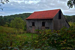 Red Tin Roof (bobglennan) Tags: nikond750 nikon nikkor landscape landscapeframing pastoral farm farmscape tinroof philadelphiaphotographer beyondtheview findingtheshot ruralamerica timing green clouds weathered virginia valley view red barn