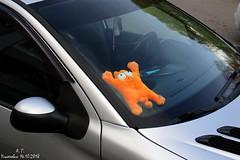 Кот. Просто кот (Aleksey Guskov) Tags: россия ульяновск игрушка кот рыжий russia ulyanovsk cat red orange