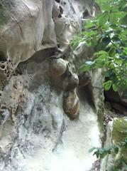 tafoni sandstone, el Corte de Madera Creek Open Space Preserve (bunky's pickle) Tags: geology sandstone sanfranciscobayarea santacruzmountainscalif hiking nature sanmateocounty tafoni