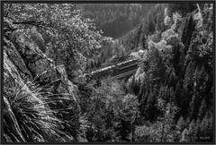 "Krauselklause Monochrome ("" Wiener Schule "") Tags: öbb oebb obb austria ghega breitenstein semmering semmeringbahn 1116 1144 taurus eisenbahn railway railroad krauselklause viadukt viaduct"