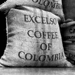 Pure Colombian (emulsivefilm) Tags: 120formatfilm 2018october 6x6 blackandwhitenegativefilm ei100 emulsivedailyphoto hasselblad hasselblad2000fcw hasselbladplanarf80mmf28 iso100 konica konicapan100