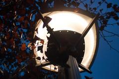 giorno 41 (20-10-18) (ilgladiatore83) Tags: school scuola aphotoaday unafotoalgiorno photoproject progettofotografico onephotoaday fotoprogetto lampione streetlamp leaves foglie luce light nightphotography fotonotturna