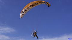Paraglider (Paragi Levente) Tags: szegedi repülőnapok repülőnap repulonap és es legiparade légiparádé 2018 szeptember 14 15 16 lumix g7 g70 g 70 panasonic 1442 lens airplane airshow hungary paragliding paramoor paramotor parachute buttfan paraglide paraglider paplanernyő