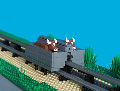 How do you transport one cow? (narrow_gauge) Tags: lartiguemonrail westernireland ireland railway ballybunion listowel cows lego