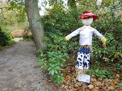Scarecrow Festival 10 (Dugswell2) Tags: scarecrowfestival2018 oldruffordhall thenationaltrust rufford