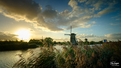 JHG_GFX50s-011189.jpg (Julian Gazzard) Tags: mill wind landscape historic old water tourist background agriculture summer windmill scenic site sky farm nature energy traditional view dutch spring kinderdijk destination sunset blue netherlands landmark travel culture vintage rural countryside picturesque world holland famous scene unesco scenery beautiful river tourism green history heritage architecture european europe environment field