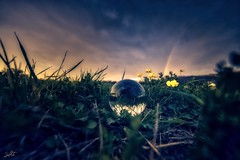 Glass Sphere (A round thing) (Neshpictures) Tags: glass sphere rund round glas kugel sonnenuntergang sunset colorful aben weitwinkel wide sony a7ii nature grass outdoors night sky nopeople plant season greencolor environment sunlight landscape backgrounds dusk tree easter meadow lightnaturalphenomenon everypixel natural