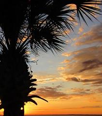 101118am (sunlight_hunt) Tags: texasgulfcoast texas texassunrisesunset texassky matagordabay sunlight