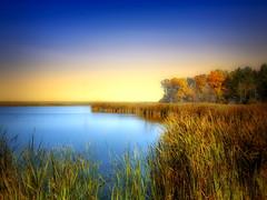 Autumn 5 (mrbillt6) Tags: landscape rural prairie pond trees grass outdoors country countryside waters northdakota water sky photoart nature peaceful fall autumn serene
