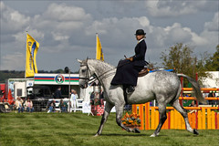Sidesaddle III (meniscuslens) Tags: grey gray horse rider lady sidesaddle dress clouds sky event arena grass bucks county show buckinghamshire aylesbury weedon