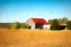 Red Roof (Water to My Soul) Tags: barn red roof trees field country outside grunge