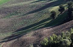 Ombre lunghe (lincerosso) Tags: collina paesaggiocollinare colinadellaltotenna montesanmartino autunno luce ombra bellezza armonia