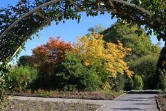 Grugapark (Eichental) Tags: essen gruga grugapark herbst ruhrgebiet