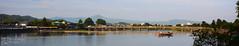 (Hannah Murphy Photography) Tags: japan japanese arashiyama water river flora tree boat bridge