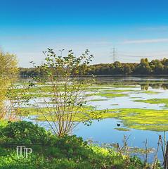 Landscape Waterdam Kemnade, Bochum (Sony_Fan) Tags: familie2018spaziergangausflugkemnadebochumherbstsonyalpha600018105g landscape nature sea water blue sky northrhinewestphalia photographer thomas umbach schwelm