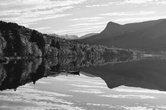 Svarthvitt høst -|- Black & white autumn (erlingsi) Tags: erlingsi iphone erlingsivertsen volda rotevatn noreg norway bnw svarthvitt høst autumn haust herbst