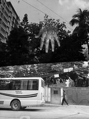 Hand of the creator (Shahrear94) Tags: blackandwhite black white street streetphotography bangladesh dhaka glass car monochromatic monochrome photography flicker divided mia2 xiaomi