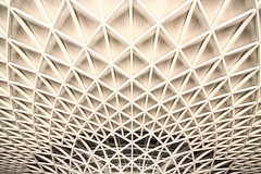 linear lattice (Andrew Eadie) Tags: kingscross station arup steel ceiling roof architecture john mcaslan architect vinci camden london canonefs1585mmf3556isusm andreweadie