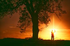 Starman (iratebadger) Tags: nikon nikond7100 d7100 dark field nikkor nikonphotography shadows sky silhouette sunset sun sunlight outside outdoors orange rural trees tree person sundown autumn farmland england eastridings alone solitary black yorkshire yellow posing sunburst iratebadger countryside