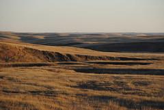 From the Highway (Elizabeth Almlie) Tags: prairie hills southdakota sunset grass