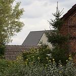Waldow_e-m10_1019225698-1 thumbnail