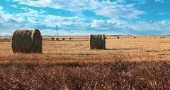 Golden Harvest (chrisroach) Tags: golden farm countries canada rural alberta fall hay bales harvest autumn