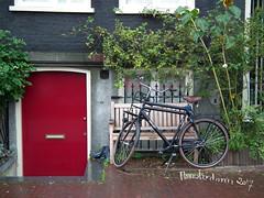 Amsterdam, 2017 (patriciabier) Tags: bicicleta bicycle vélo photomontage montagephoto amsterdam paysbas hollande netherland bike red rosso rouge brun bruno brown voyage travel reise souvenir