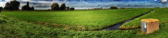 The Green (Alfred Grupstra) Tags: nature ruralscene grass outdoors landscape meadow sky scenics cloudsky field summer farm hill agriculture land tree europe greencolor nonurbanscene nopeople panorama