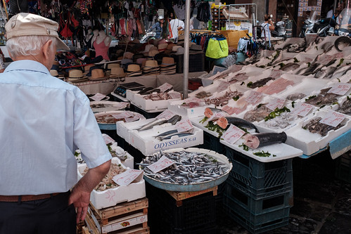 Fish at the market near our airbnb