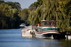 Runnymede-Old Windsor 10 October 2018 006 (paul_appleyard) Tags: october 2018 river thames old windsor blue sky trees autumn fall colours colors boats barge barges nieuwe zorg