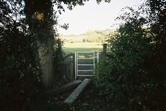 Footbridge over a dry stream (knautia) Tags: northsomerset england uk october 2018 film ishootfilm olympus xa2 olympusxa2 kodak ektar 100iso nxa2roll84 footpath bridge footbridge stream gate