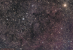 IC 1396 in Cepheus - 1o/10/2018 (alienwatch) Tags: ic 1396 ic1396 elephanttrunknebula asi071mcpro williamsopticsgt81 startools app celestroncgx