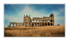 WHITBY ABBEY RUINS (Lucky Del) Tags: derekmonaghan whitby abbey ruins england