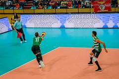 _FPV3392 (américodias) Tags: viana365 benfica sporting voleibol fpv