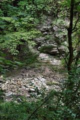 _Sochi_Uschele_Agura_2009_07_07 (Бесплатный фотобанк) Tags: gorge krasnodarkrai river russia sochi агура краснодарскийкрай сочи россия ущелье река природа nature гора большойахун