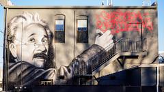 QUESTION EVERYTHING (Web-Betty) Tags: streetart einstein questioneverything denver colorado urban
