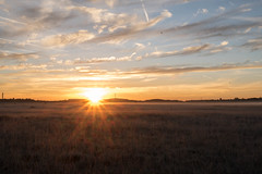 _DSC9540.jpg (thomasresch) Tags: sonneaufgang sun nordhaide panzerwiese nebel hartelholz sunrise sonne