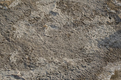 IMG_0384 Costa de Sa Rapita (Fernando Sa Rapita) Tags: baleares canon canoneos eos1300d mallorca sarapita sigma sigmalens charco coast coastline costa mar pool puddle sal salt sea
