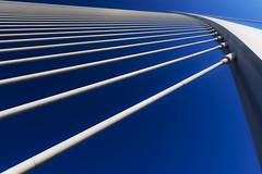Pont (Maerten Prins) Tags: spain spanje valencia calatrava santiagocalatrava architect architecture modern cityofartsandsciences bridge pontdelassutdelor blue white line lines curve curves sky cable cables