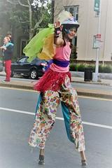 (Glass Wheels) Tags: honk honkfest honk2018 cambridge cambridgemassachusetts cambridgema somerville festival street