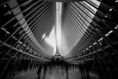 New YorkBW0432 (schulzharri) Tags: new york city usa stadt black white schwarz weis monochrome art kunst architektur personen linien fenster symmetrie