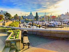 HBM! Victoria's inner harbour (peggyhr) Tags: peggyhr bench hbm innerharbour boats promenade parliamentbuildings autumn img9693a victoria bc canada niceasitgets~level1
