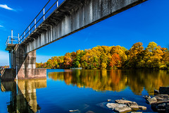 Poured Gold. (Igor Danilov Philadelphia) Tags: fall autumn gold blue spilled rich colors richness fortune thick density nikon november first back is beauty young share peace life foliage pennsylvania water wood tree lake sky concrete d850 corecreekpark bucks