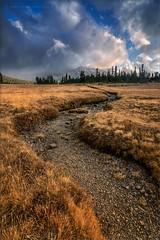 Valley Twist (TomGrubbe) Tags: mountain grass stream danameadows clouds storm yosemite yosemitenationalpark mamothpeak easternsierras california landscape