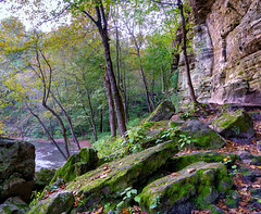 Minneopa Creek Gorge 2 - Minneopa State Park, MN (j-rye) Tags: sonyalpha sonya6000 sony a6000 ilce6000 mirrorless onlyinmn park rock gorge river creek moss bslg